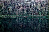 Parco del Ticino presso Somma Lombardo (Varese). Bosco specchiato nell'acqua --- Park of Ticino river near Somma Lombardo (Varese). Wood mirrored in the water