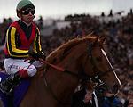 Orfevre wins the Arima Kinen at Nakayama Racecourse on December 25th, 2011