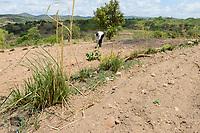 ZAMBIA, Sinazongwe, contour farming, farming in hilly area, plowing along the hill contour lines and grass rows for erosion protection / SAMBIA, Sinazongwe, Dorf Muziyo, contour farming, Kontur Anbau ist die landwirtschaftliche Praxis des Pflanzens über einen Hang entlang seiner Höhenkonturlinien. Die mit Gras bepflanzten Konturlinien erzeugen eine Wasserpause, die die Bildung von Rinnen und Schluchten und Bodenerosion in Zeiten starken Wasserablaufs verringert