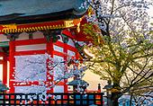 Japon, Kyoto, temple Kiyomizu-dera