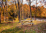 Picnic tables in the yard at Abingdon Vineyard and Winery overlook the south fork of the Holston River (near Abingdon, Virginia).