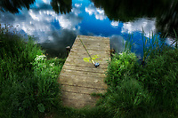 Pier with fly fishing rod on small trout pond in the Cotswolds