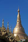 Myanmar, (Burma), Yangon Region, Rangoon: Golden stupa of the Shwedagon pagoda | Myanmar (Birma), Yangon-Division, Rangun: Goldene Stupa der Shwedagon Pagode