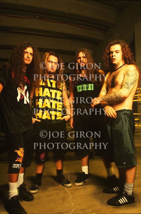 Various portraits & live photographs of the rock band, Sepultura
