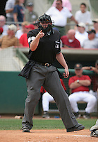 MLB Umpire Dusty Delinger during a Houston Astros vs. Florida Marlins game March 15th, 2007 at Osceola County Stadium in Kissimmee, FL during Spring Training action.  Photo By Mike Janes/Four Seam Images