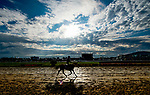 October 2, 2020: Horses exercise just after sunrise as rain clouds start to break while horses prepare for Preakness Stakes Week races at Pimlico Race Course in Baltimore, Maryland. Scott Serio/Eclipse Sportswire/CSM