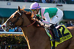 HALLANDALE BEACH, FL - JANUARY 28: Suffused with jockey Jose Ortiz get the win in the La Prevoyante Stakes (G3T) on Pegasus World Cup Day at Gulfstream Park. (Photo by Arron Haggart/Eclipse Sportswire/Getty Images