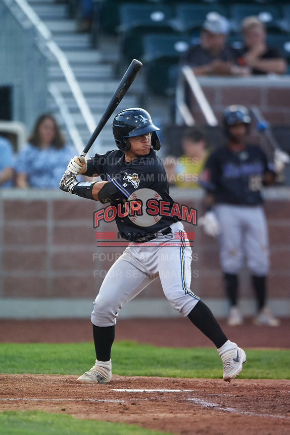 Missoula Osprey Luvin Valbuena (38) at bat during a Pioneer League game against the Idaho Falls Chukars at Melaleuca Field on August 20, 2019 in Idaho Falls, Idaho. Idaho Falls defeated Missoula 6-3. (Zachary Lucy/Four Seam Images)