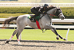 07 April 2011.  Hip #77 Cozzene - Two Hollys colt consigned by Eddie Woods.