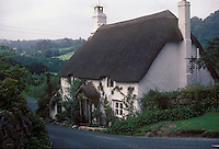 Thatched roof on cottage beside country lane in Devonshire, England, UK