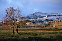 Europe/France/Auvergne/63/Puy-de-Dôme/Parc Régional des Volcans/Les Monts Dores: Le massif aux environs de Besse