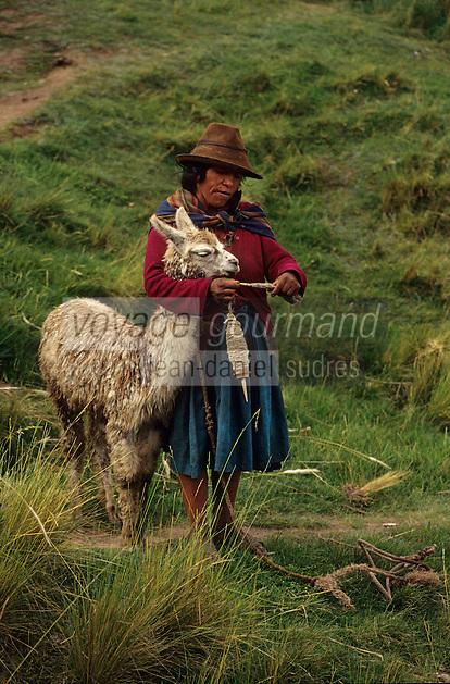 Amérique/Amérique du Sud/Pérou/Env de Cuzco : Indienne et lama