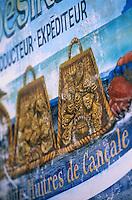 """Europe/France/Bretagne/Ille et Vilaine/Cancale: enseigne huitres de Cancale """"Chez Désirée"""""""