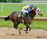 Il Divo winning at Delaware Park on 6/6/13