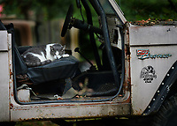 A cat sleeps Friday, Sept. 11, 2020, in the passenger seat of an open Ford Bronco on Hickory Street in Fayetteville. Cool weather with highs in the low 80s is expected for the next week according to the National Weather Service. Visit nwaonline.com/200912Daily/ for today's photo gallery. <br /> (NWA Democrat-Gazette/Andy Shupe)