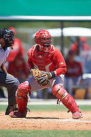 GCL Cardinals catcher Irving Wilson (4) checks the runner during the second game of a doubleheader against the GCL Marlins on August 13, 2016 at Roger Dean Complex in Jupiter, Florida.  GCL Cardinals defeated GCL Marlins 2-0.  (Mike Janes/Four Seam Images)