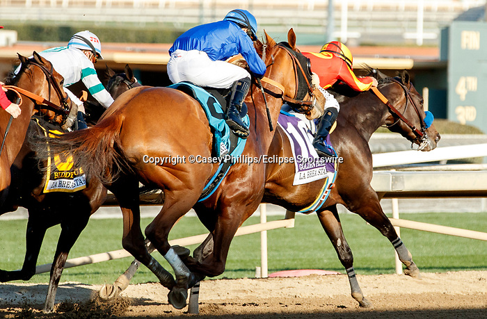 ARCADIA, CA DECEMBER 26: #9 Fair Maiden, ridden by Ricardo Gonzalez, takes on #10 Golden Principle, ridden by Mike Smith, takes the lead in the stretch of the La Brea Stakes (Grade l) on December 26, 2020 at Santa Anita Park in Arcadia, CA.<br /> (Photo by Casey Phillips/Eclipse Sportswire/CSM.)
