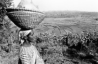 Burundi. Karuzi Province. On the road to Gyhogazi, a view on the rice fields. A woman carries a wicker basket on her head. © 2000 Didier Ruef