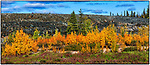 Autumn colours at the old Giant Mine site in Yellowknife