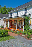 Annual garden of marigolds, Dusty miller, celosia, dahlia, house porch