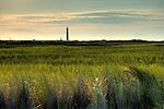 Folly Beach South Carolina Sunrise Beach Scene Morris Island Light house Lighthouse