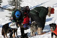 Veterinarians check over Buser's dogs at Koyuk. Photo by Jon Little.