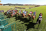 November 7, 2020 : Horses break out of the starting gate during the Turf Sprint on Breeders' Cup Championship Saturday at Keeneland Race Course in Lexington, Kentucky on November 7, 2020. Matt Wooley/Eclipse Sportswire/Breeders' Cup/CSM
