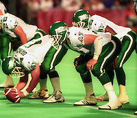 Brooks Findlay Saskatchewan Roughriders 1991. Photo F. Scott Grant