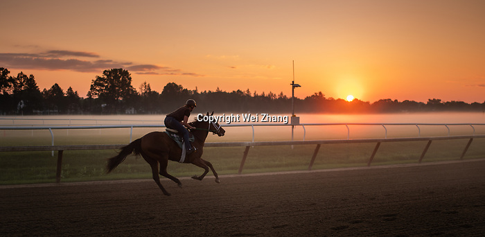 July 3, 2019: Horses get the feel of the Oklahoma Training Track at Saratoga Race Course during morning workouts as action picks up for the start of the marquee Summer Meet in Saratoga Springs, New York. Wei Zhang/Eclipse Sportswire/Cal Sport Media