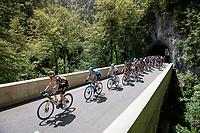 peloton up the Col de Porte<br /> <br /> 73rd Critérium du Dauphiné 2021 (2.UWT)<br /> Stage 6 from Loriol-sur-Drome to Le Sappey-en-Chartreuse (167km)<br /> <br /> ©kramon