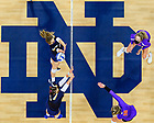 March 26, 2021; Volleyball (Photo by Matt Cashore/University of Notre Dame)