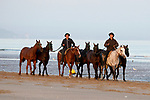 August 15, 2021, Deauville (France) - Horses from the Barrière Deauville Polo Cup after training at the beach in Deauville. [Copyright (c) Sandra Scherning/Eclipse Sportswire)]