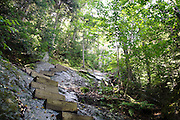Trail Stewardship - Wooden steps along the Appalachian Trail (Beaver Brook Trail) during the summer months in the White Mountains, New Hampshire USA .