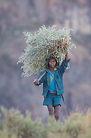 Boy carrying Casay near the Blue Nile Watershed in Ethiopia