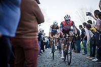 Jasper STUYVEN (BEL/Trek-Segafredo) up the Oude Kwaremont<br /> <br /> 62nd E3 BinckBank Classic (Harelbeke) 2019 <br /> One day race (1.UWT) from Harelbeke to Harelbeke (204km)<br /> <br /> ©kramon