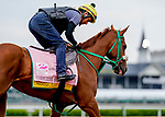 April 28, 2021: Competitive Speed exercises in preparation for the Kentucky Oaks at Churchill Downs on April 29, 2021 in Louisville, Kentucky. Scott Serio/Eclipse Sportswire/CSM