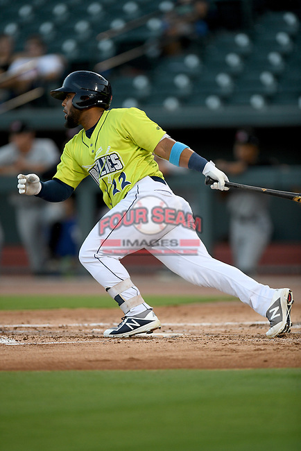 Designated hitter Walter Rasquin (22) of the Columbia Fireflies bats in a game against the Hickory Crawdads on Wednesday, August 28, 2019, at Segra Park in Columbia, South Carolina. Hickory won, 7-0. (Tom Priddy/Four Seam Images)