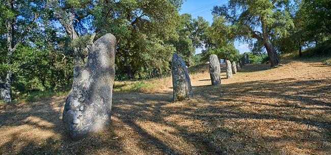 Pictures & images of prehistoric Copper age proto anthropomorphic standing stone statue Menhirs in the  Biru 'e Concas archaeolological site, Sorgono, Sardinia