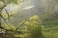 Great Smokey homeplace hideaway