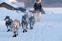 Dallas Seavey team runs down the road arriving at Kaltag in 20 degrees below zero temps during Iditarod 2009