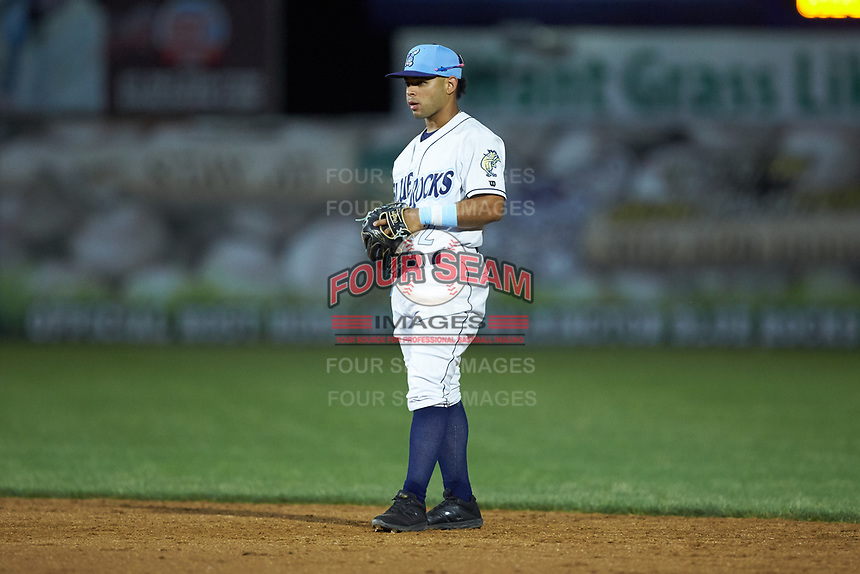 Wilmington Blue Rocks second baseman Ricky Aracena (12) on defense against the Fayetteville Woodpeckers at Frawley Stadium on June 6, 2019 in Wilmington, Delaware. The Woodpeckers defeated the Blue Rocks 8-1. (Brian Westerholt/Four Seam Images)