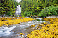 A freshwater waterfall flows into Prince William Sound on a small island near Cordova, Alaska.