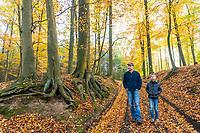 Mann und Junge wandern im Grumsiner Forst, Weltnaturerbe der UNESCO, Angermünde, Uckermark, Brandenburg, Deutschland