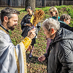 Sprinkling of blessed water, Jackson Creek, January 19, 2018: Theophany and the Blessing of the Waters on January 6th of the old calendar at St. Sava Church, Jackson, Calif. on a wet and rainy day.