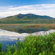 This photo represents June in the 2018 White Mountains New Hampshire calendar. Cherry Mountain from Moorhen Marsh along the Presidential Range Rail Trail in Jefferson, New Hampshire. You can purchase a copy of the calendar here: http://bit.ly/2rND4Kf