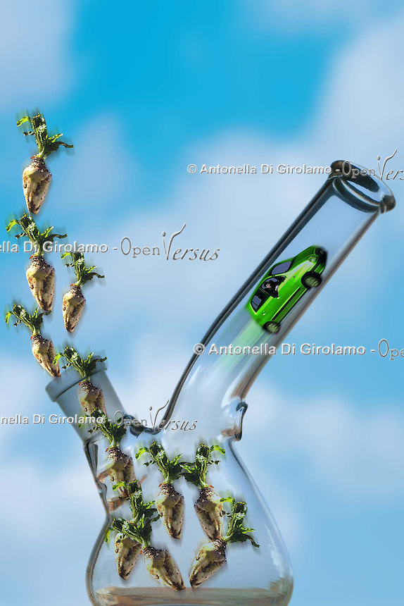 Biodiesel, nuovi carburanti ecologici. Biodiesel, the new environmentally friendly fuels.....