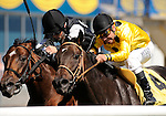 09 September 19: Jockey Raymond Sabourin urges Shawanga (no. 4) to victory  over Justin Stein and Mimi Cooper in the 3rd race at Woodbine Racetrack in Rexdale, Ontario.