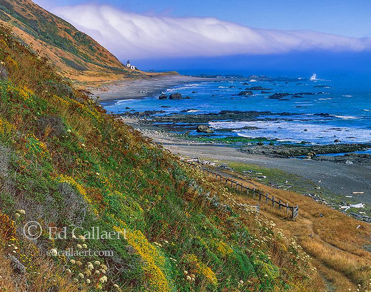Punta Gorda Lighthouse, King Range National Conservation Area, Humboldt County, California
