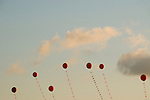 Red balloons in the sky