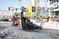 Benjamin Harper and team leave the ceremonial start line with an Iditarider at 4th Avenue and D street in downtown Anchorage, Alaska during the 2015 Iditarod race. Photo by Jim Kohl/IditarodPhotos.com